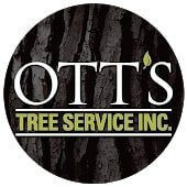 Ott's Tree Service (3)